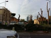 viale-Italia-ora-è-così-635x476