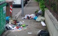cassonetto-spazzatura-in-strada-635x476