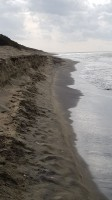 erosione pgs2